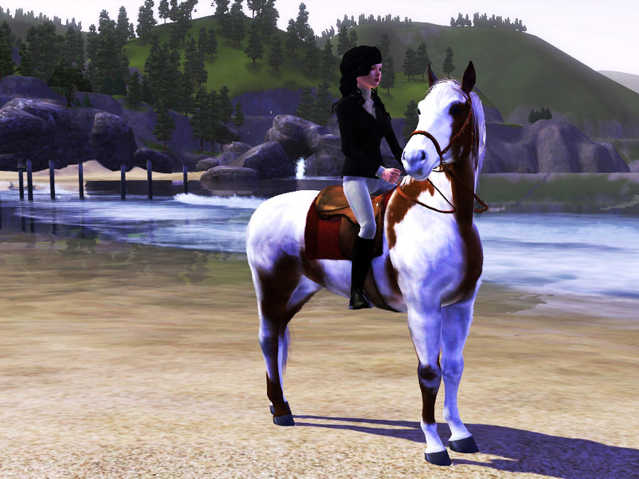 cool free horse games with logins