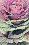 Dream Leaves by xBetweenTheLens