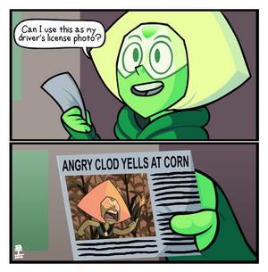 Corn on the clod