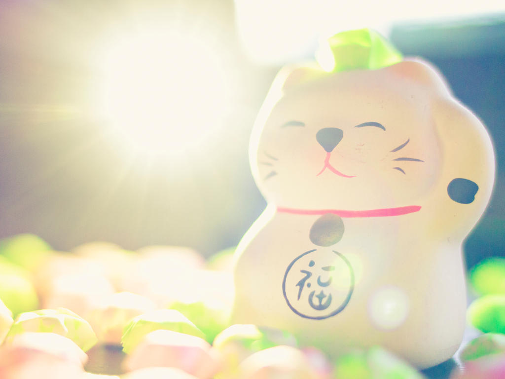 Lucky Cat by PoshPhotos