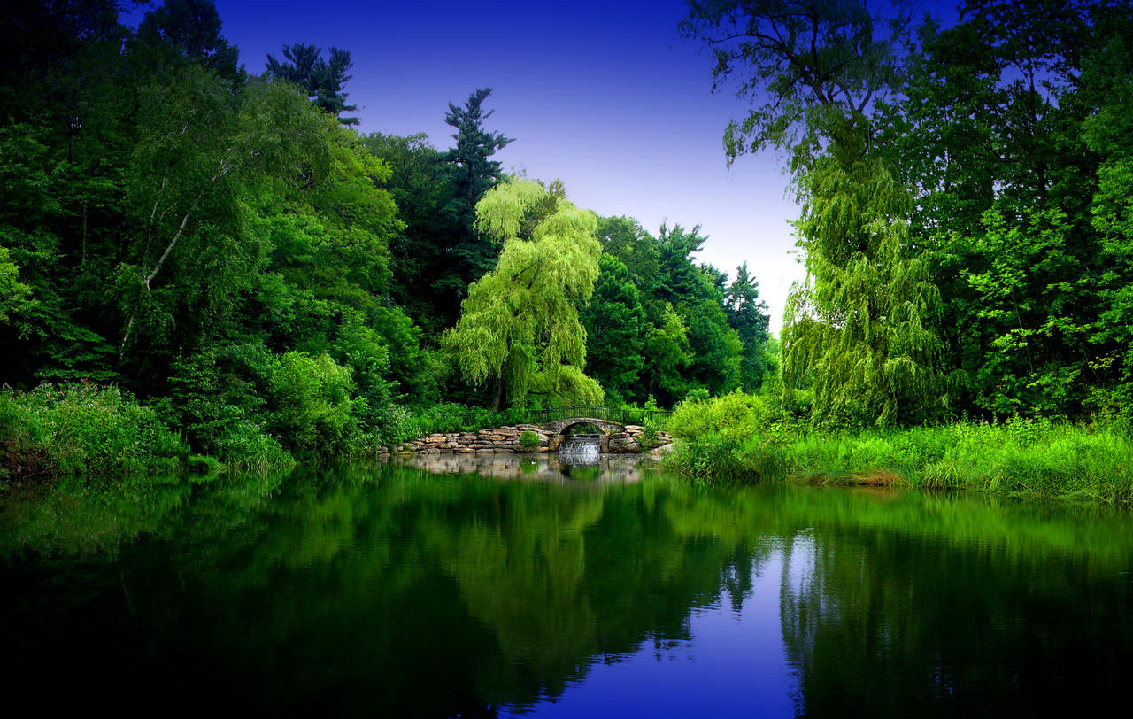Zen Garden 2 by pueang