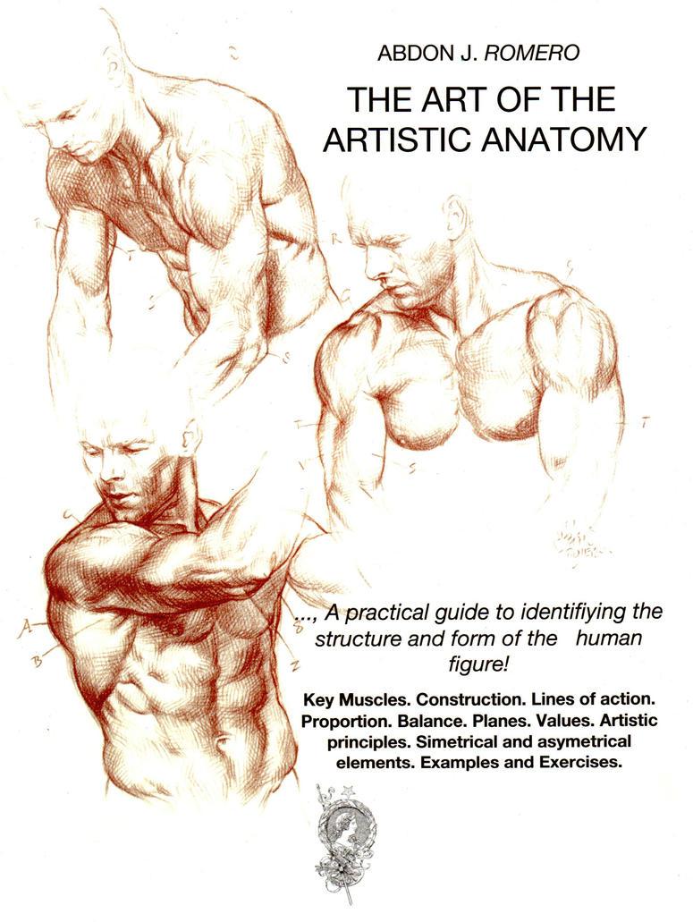 THE ART OF THE ARTISTIC ANATOMY by AbdonJRomero on DeviantArt