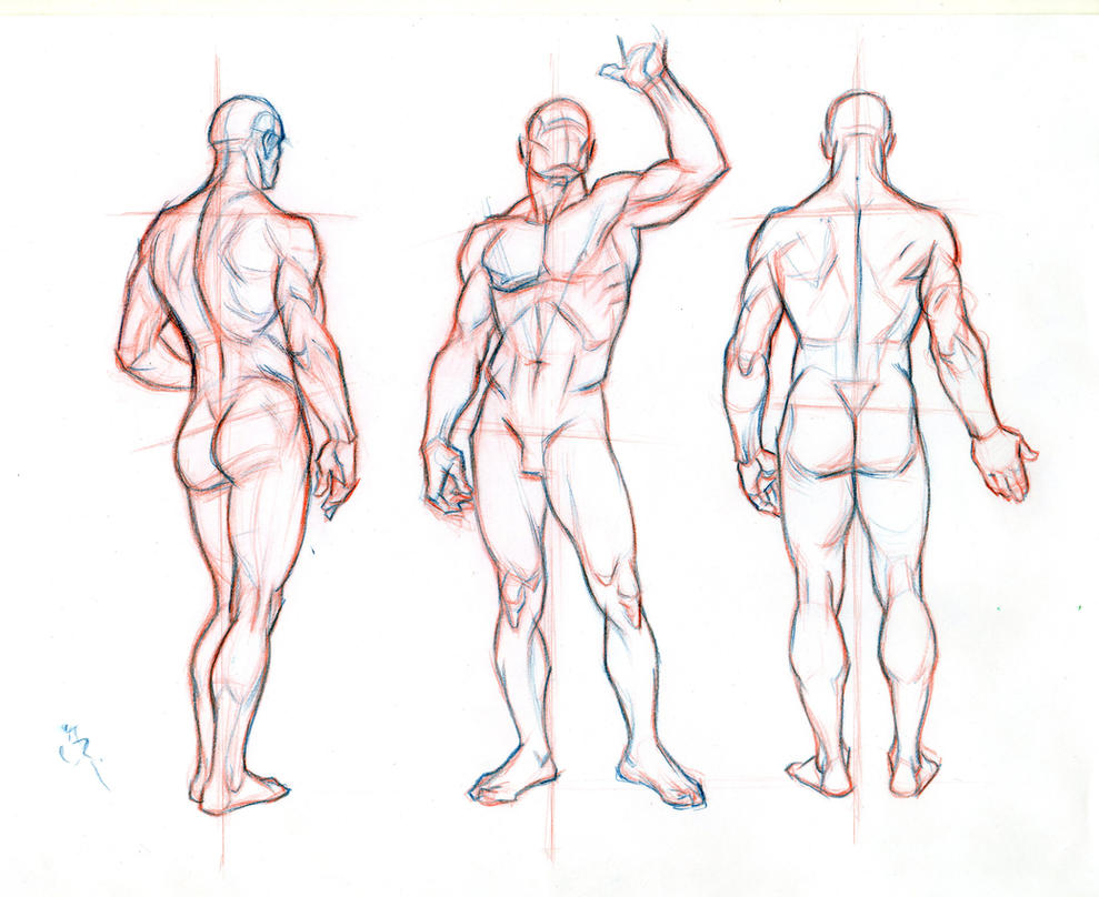 anime male anatomy - HD3000×2453