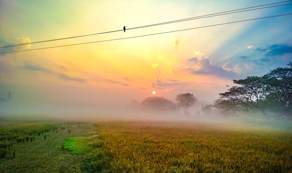 good morning  by sreeharitkd