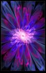 Purity Bloom