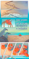 The story of a crab who wanted to be a ballerina