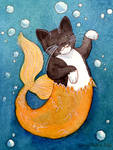 The Amazing Mermaid Cat