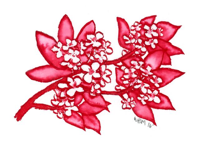 Inktober Sketch- Plum Blossoms by matildarose