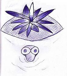 Zolw z Kwiatem