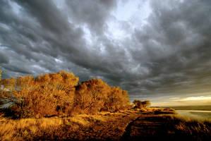 Lake Ellesmere, NZ by bryantd
