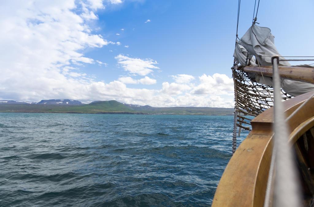 Land ahoy! by robinatl