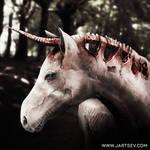 Unicorn by alyssajartsev