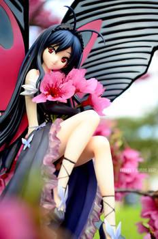 Love for Cherry Blossom
