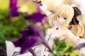 Saber Lily by HunterX-v2