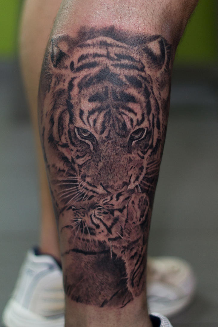 Tigers by ACrowley