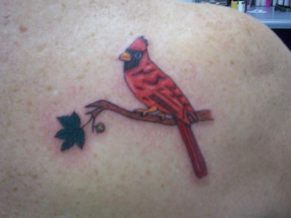 bird tattoos