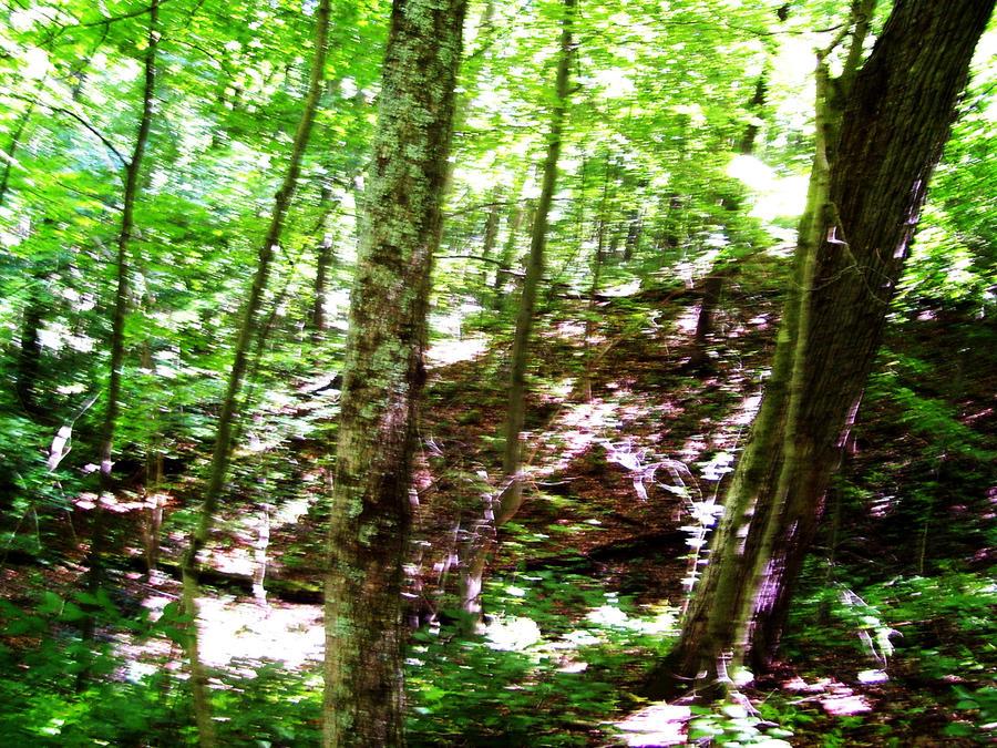 .:Hiking 5:.