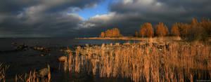 Ulko-Krunni - Autumn light I