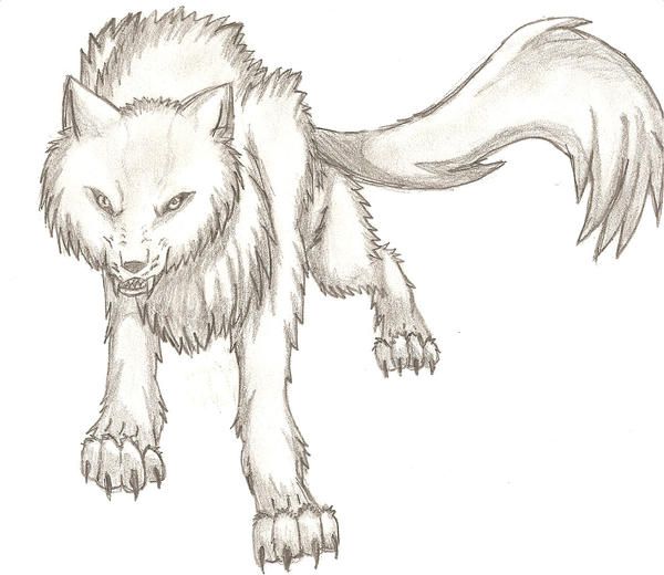 Angry Wolf Head Drawing