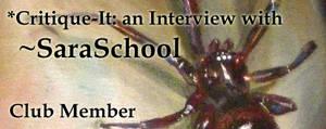 Member: SaraSchool by Critique-It