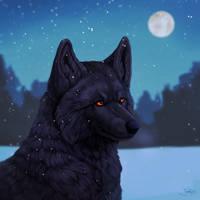 Raven by marierockk