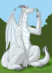 Spring Dragon rqst by Stevan29