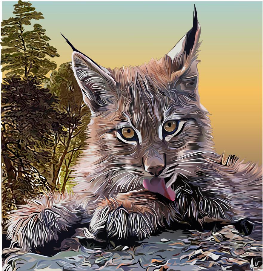 Lynx by Alexxxx1