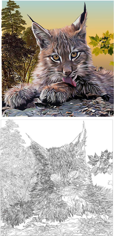 Lynx 2 by Alexxxx1