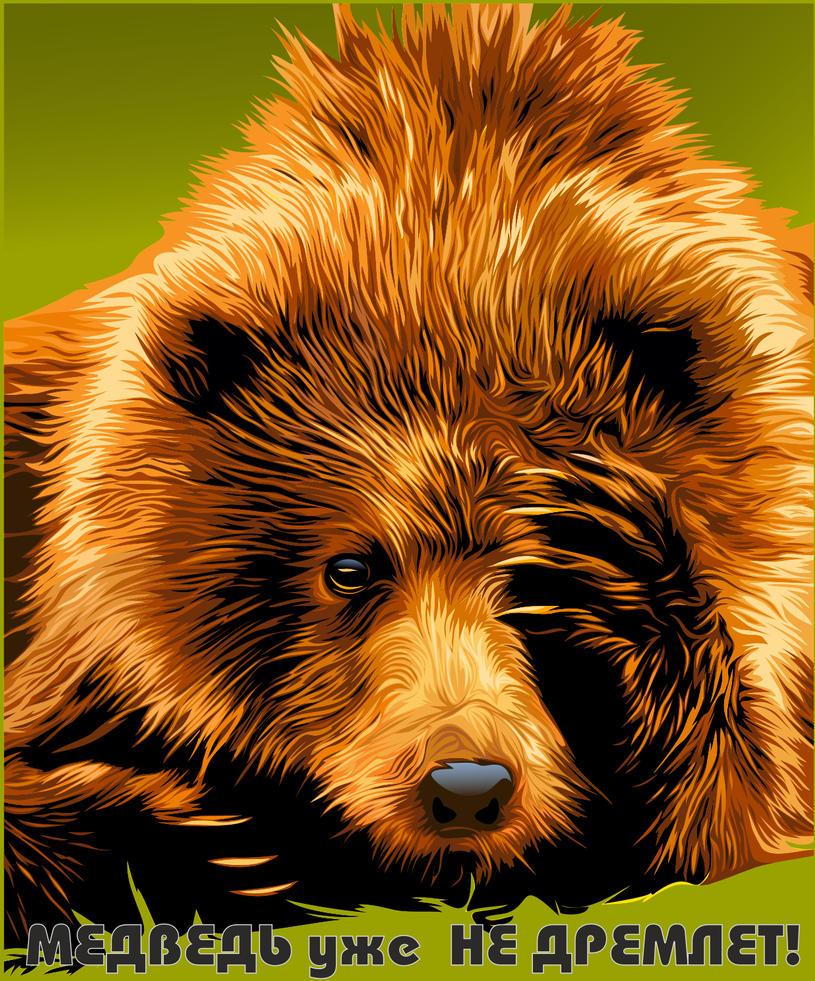 Bear by Alexxxx1