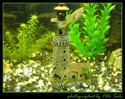 Lighthouse in a fish tank