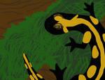 Salamander by MoonlightAngel