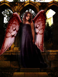 angels do fall