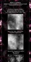 Tutorial for Nebula