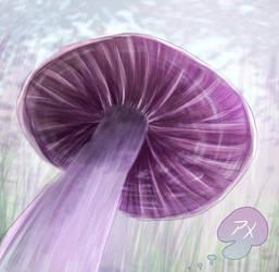 A Better Umbrella
