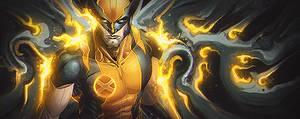 Wolverine found the light