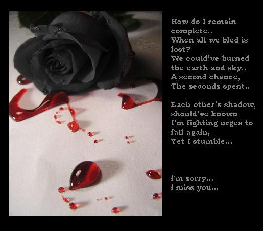 http://fc02.deviantart.com/fs13/f/2007/061/d/4/black_rose__im_sorry_by_tsaii.jpg