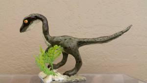 Custom Raptor model
