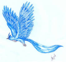 Articuno by stalit