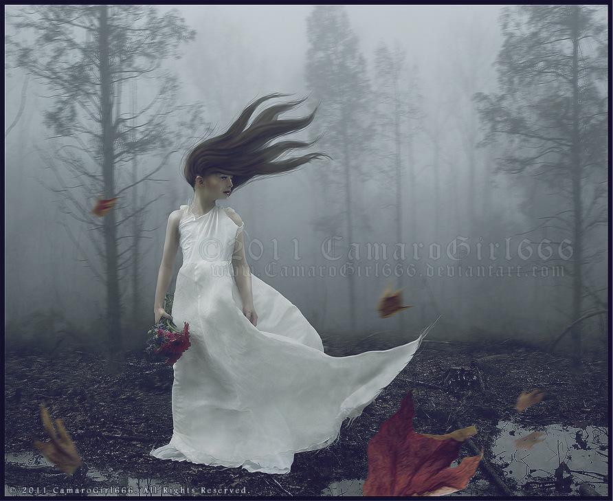 Lost Dream by CamaroGirl666