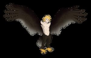 Atlas the Harpy
