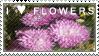 Flowers Stamp by SailorSolar