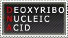 DNA Stamp by SailorSolar