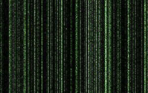 HD Matrix Wallpaper by Darkdragon15