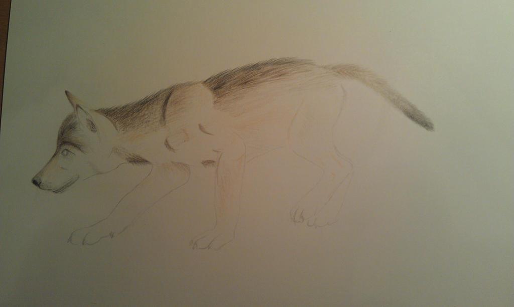 work in progress - commission for MrsKyoya by varjHuN