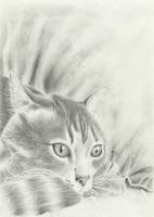 Sandglass graphite drawing by varjules