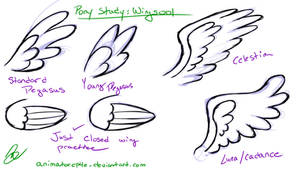 Pony Study: Wings001 by AffinityShy