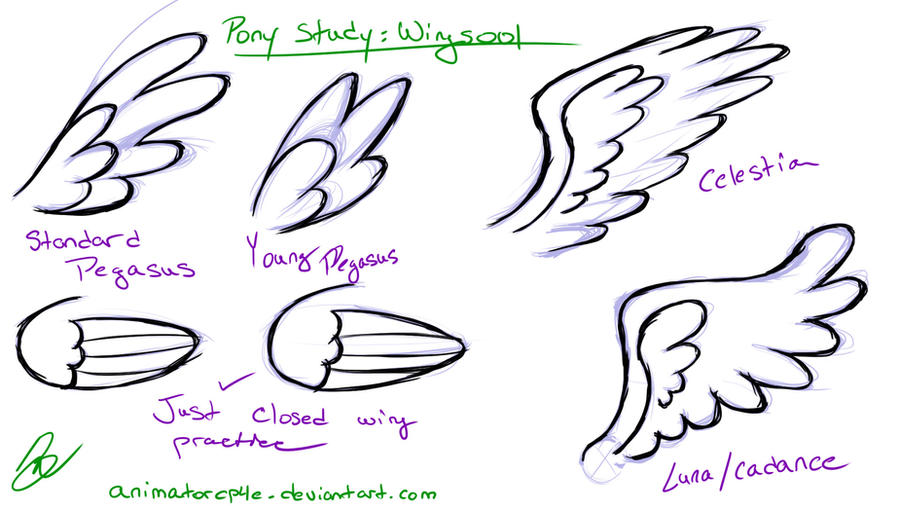How To Draw An Easy Pegasus Apps Directories