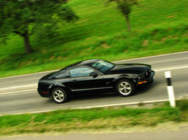 Mustang GT. by AmericanMuscle