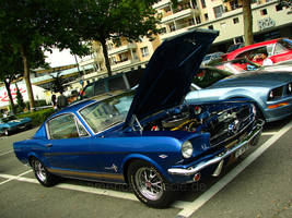 .blue fastback. by AmericanMuscle