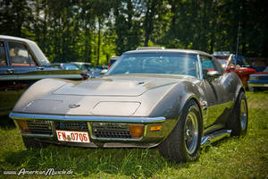 Gray Corvette C3 by AmericanMuscle